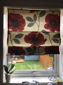 Next red poppy roman blind & curtains