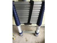 3.8m telescopic ladders (XTEND +CLIMB)