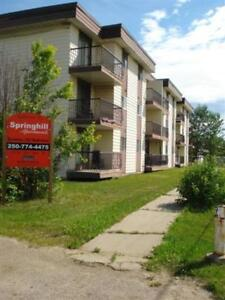 FORT NELSON - Springhill - Bachelor Apartment