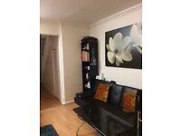 Beautiful flat share with professional people double room available in Stratford