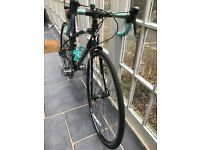 Specialized Dolce 2014 Womens Road Bike