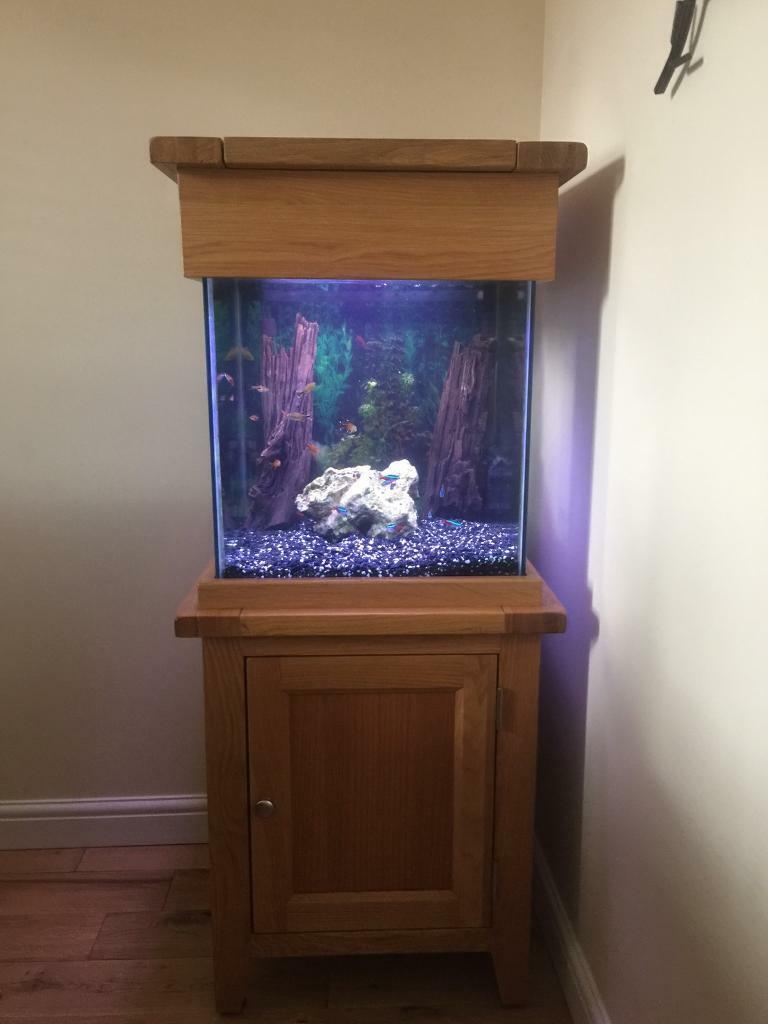 Aqua oak small cube tropical fish tank in kesgrave for Small fish tanks for sale