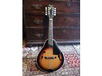 Vintage Harmony 8018 Mandolin