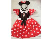Minnie Mouse dress up age 2-3 world book day
