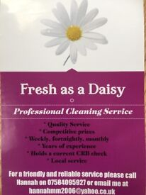 Are you looking for a reliable, friendly and professional cleaner?