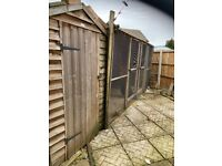 Chicken shed pen /run