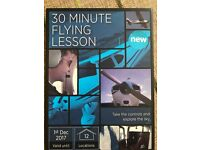 30 Minute Flying Lesson.