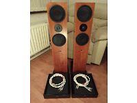 2 x Linn Klout power amps and Linn Ninka speakers