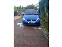 Lupo for sale