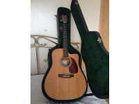 Martin & Co, DC-16GTE, Gloss Top, Dreadnought