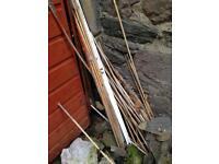 Bundle of garden bamboo sticks