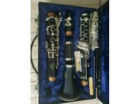 Amati ACL 201 Bb clarinet with Case full kit