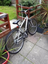 Adult bike hardly used21 speed quick shift gears very good condition