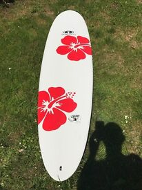 "Epoxy Flying Carpet Surfboard - 6'9"" with Animal Surfboard Bag included"