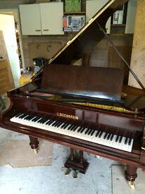 Bechstein grand 6' newly restored