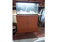 aquael 70 fish tank