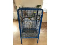 Large parrot/bird cage. 134 down/59 across.