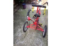 disability child's trike tomcat