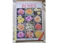 Hardback Book of Roses