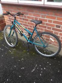 M-Tec all terrain bike