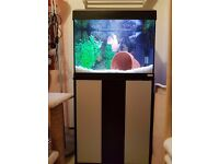 Fluval 90 litre 2ft Aquarium