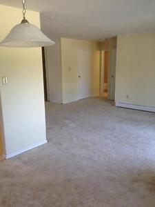 520 Parkside Drive - Two Bedroom Apartment Apartment for Rent Kitchener / Waterloo Kitchener Area image 4
