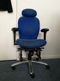 Haider Bioswing Ergonomic Chair