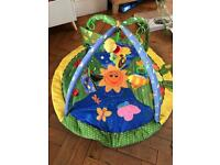 Baby play mat activity gym