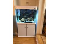 Boyu 198L White Aquarium and Cabinet. Immaculate condition less than 12 months old. £180