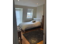 LARGE FURNISHED DOUBLE ENSUITE BEDROOM FOR RENT IN SOUTHFIELDS