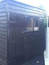 Garden shed £100 ONO