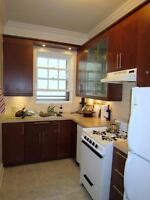 Large, Bright 3 1/2 RENOVATED KITCHEN (with DISHWASHER!)