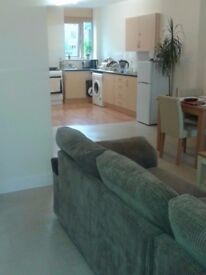 Sunny,warm and furnished double room from 21st December.