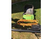 Electric Lawn RAKE