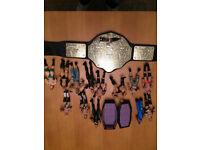 WWE Superstar figures
