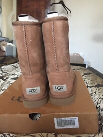 Brand New Genuine Ugg Boots sz 7/7.5