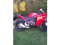 Red 14' plate Honda CBR for sale, extremely low milage