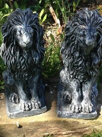 Gorgeous pair of solid sitting lions
