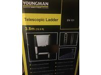 Youngmans telescopic ladder