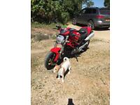 Ducati Monster M696+ 2800 miles excellent condition 2008 FSH