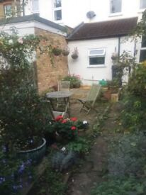 Three bedroom house in Northfields available