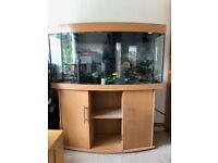 Juwel Vision 260 Aquarium with Eheim Professionel 3 filter, Eheim heater & Eheim gravel cleaner ...