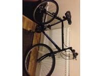 Falcon Bike