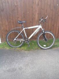 Raleigh silver mountain bike