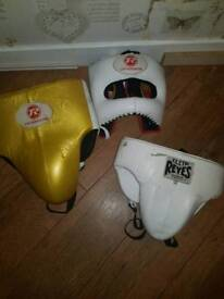 Ringside head guard and protector