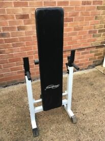 Physionics Adjustable Folding Weight Bench