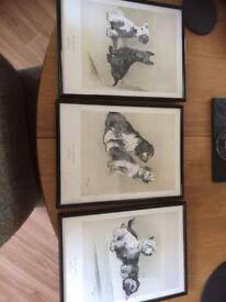 Cecil Aldin prints