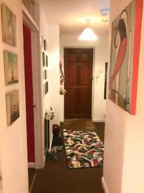 Semi-Double Room Available