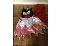 Girls fancy dress outfit