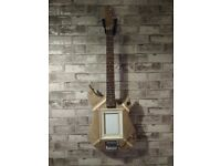 Guitar with picture frame